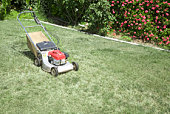 Lawnmower sitting on the lawn