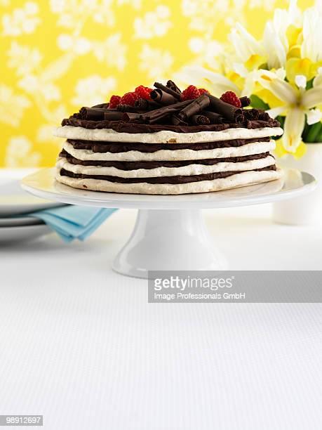 Layered meringue cake with chocolate cream and raspberries, close-up