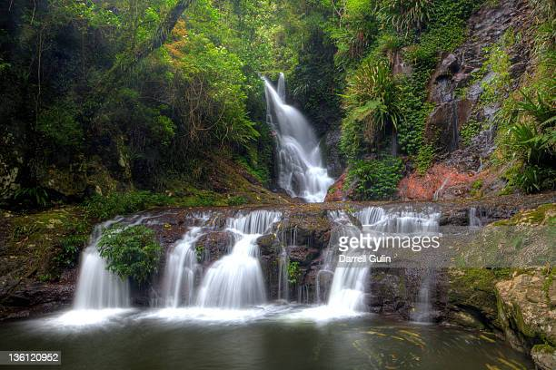 Layered waterfall in tropical rainforest Lamington