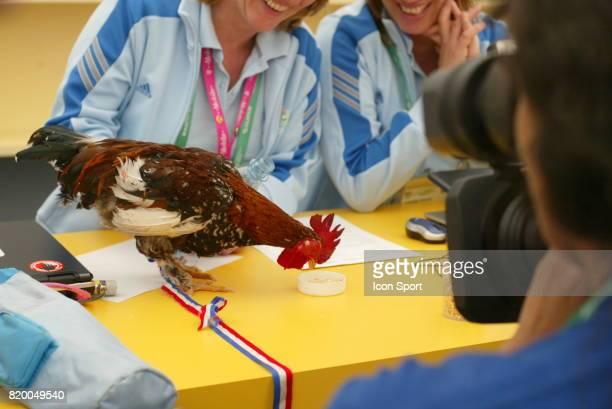 Le Coq BALTHAZAR au centre d Accreditation France / Togo Coupe du Monde 2006