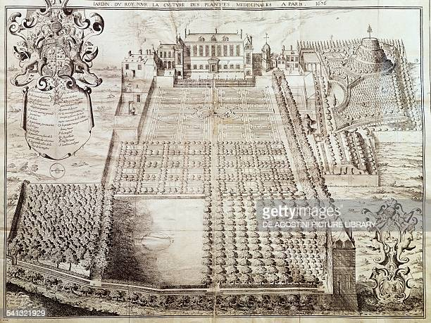 Le Jardin du Roi for the cultivation of medicinal plants engraving from 1636 France 17th century Paris Hôtel Carnavalet