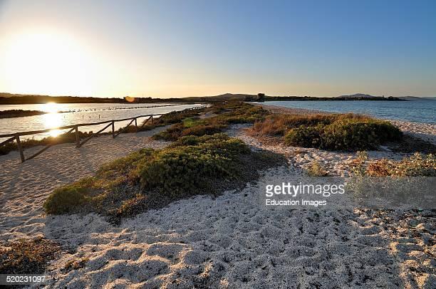 Le Saline beach Stintino Sardinia Italy