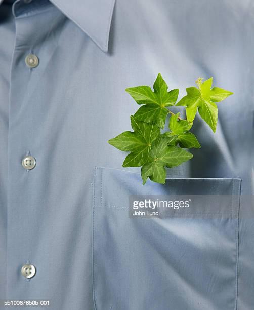 Leaf growing out of man's pocket, close-up