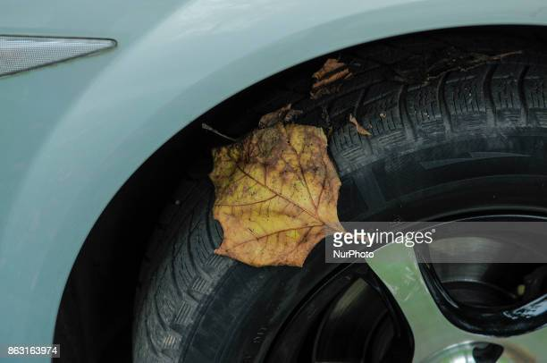 A leaf is seen on a car tire in Bydgoszcz Poland on 19 October 2017