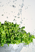 Leaf lettuce and water