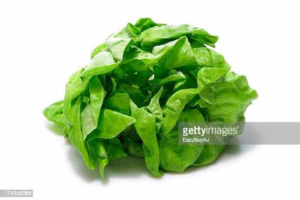 Feuille de salade
