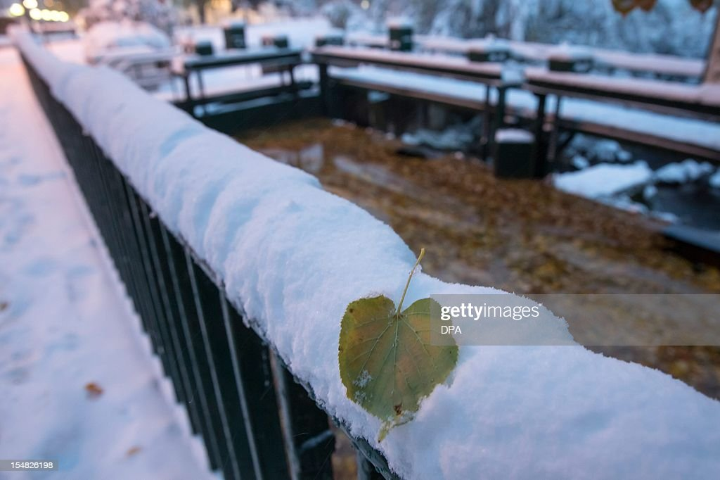 A leaf lies on a snow covered handrail in Ilmenau, eastern Germany on October 27, 2012. Temperatures at the freezing point led to snowfall in eastern parts of Germany. AFP PHOTO / Michael Reichel GERMANY OUT