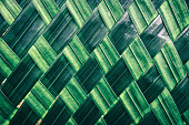 weave of green palm leaf Background