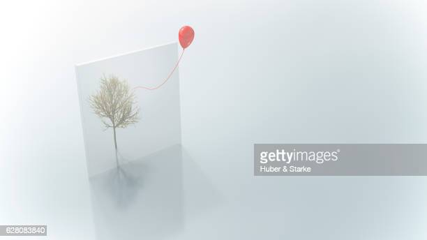 leafless maple tree behind glass and red balloon