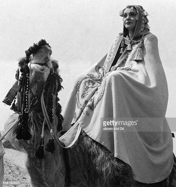 Leander Zarah Actress singer Sweden * Scene from the movie 'Das Lied der Wueste' as Grace Collins riding a camel Directed by Paul Martin Germany 1939...