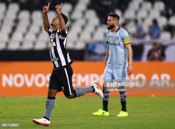 Leandrinho of Botafogo celebrates a scored goal against Gremio during a match between Botafogo and Gremio as part of Brasileirao Series A 2017 at...
