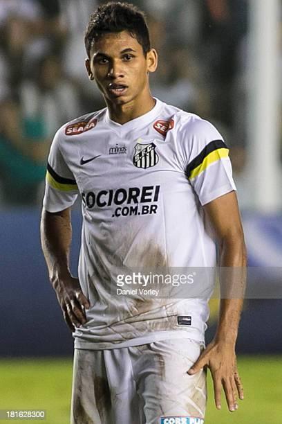 Leandrinho of Santos during the match between Santos and Criciuma for the Brazilian Series A 2013 at Vila Belmiro stadium on September 22 2013 in Sao...