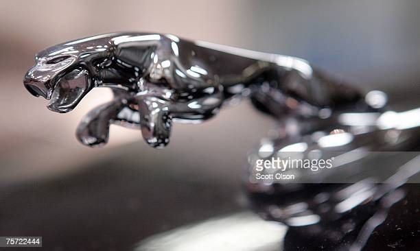 A leaping cat hood ornament decorates the hood of a a new Jaguar sitting in a showroom July 26 2007 in Chicago Illinois Ford which owns the Jaguar...