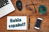 do you speak spanish, Habla español