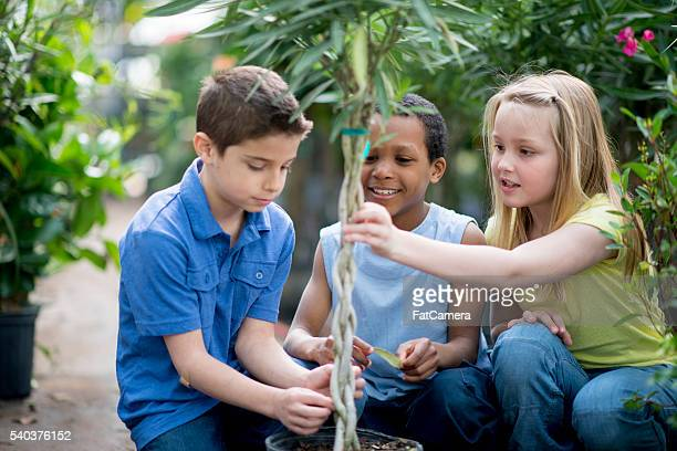 Learning About Biology in a Nursery