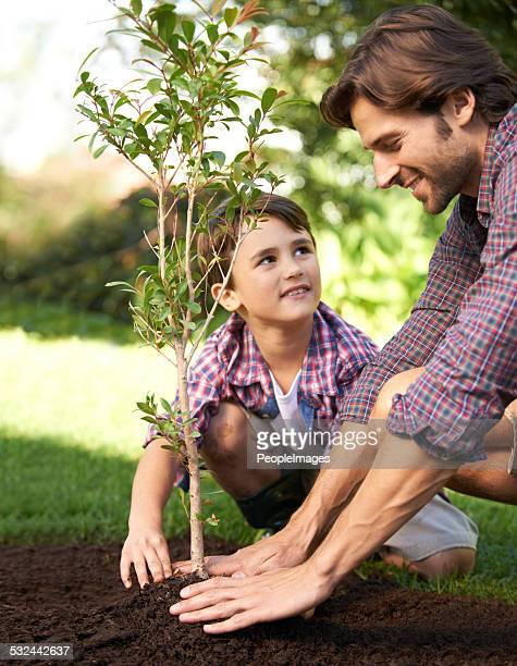 Learning about gardening from Dad