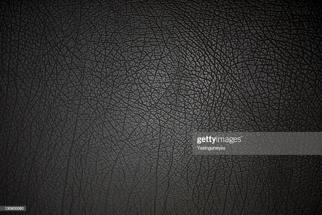 Leather Background : Stock Photo
