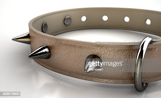 Leather Studded Collar : Stock Photo