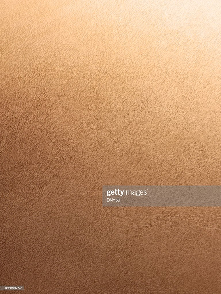 Leather Surface