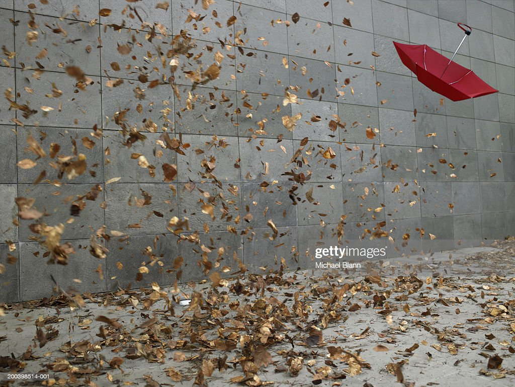 Leaves and open umbrella blowing along pavement : Stock Photo