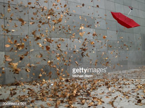 Leaves and open umbrella blowing along pavement