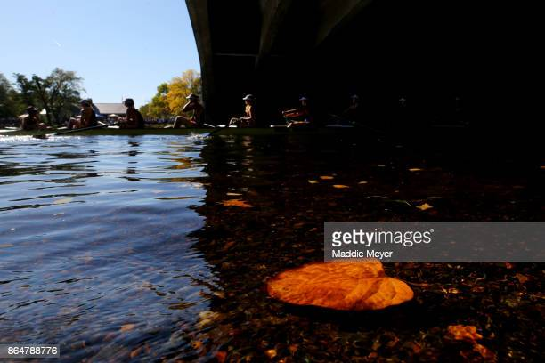 Leaves float i the Charles River as athletes make their way to the starting line during the Head of the Charles Regatta on October 21 2017 in Boston...