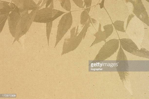 Leaves on canvas