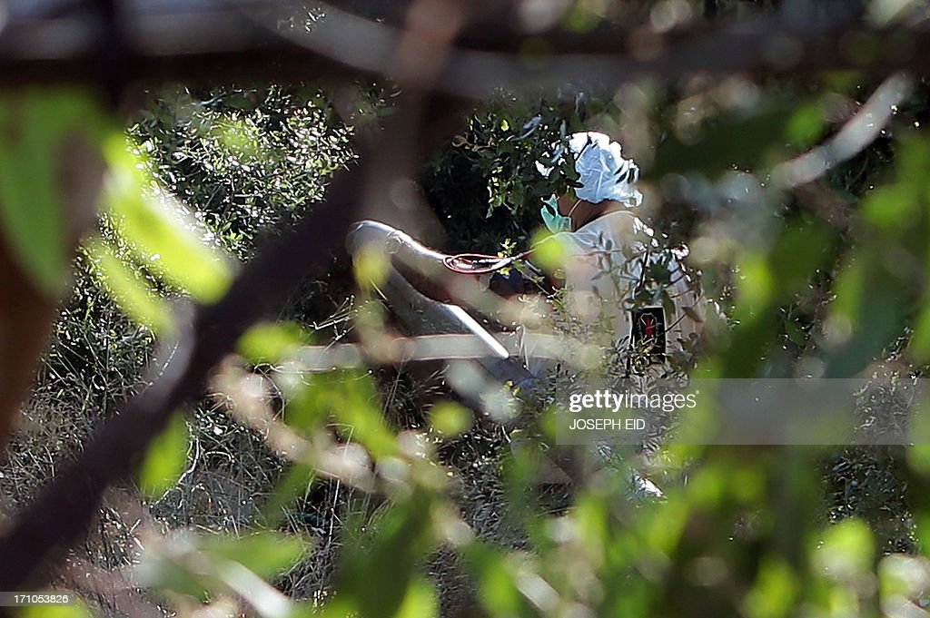 A Lebanese Army forensic investigator inspects a missile which failed to launch hidden between shrubbery in the Balluneh area, north of Beirut, on June 21, 2013. A Grad rocket fired from north of the Lebanese capital exploded near the city overnight, a security source said, adding that the army also found a second rocket at the launch site.
