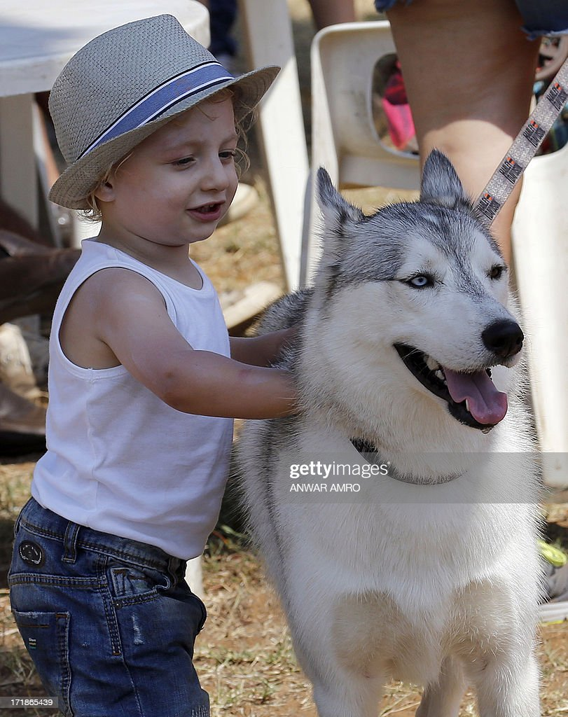 a lebanese child pets a husky during the beirut for the ethical