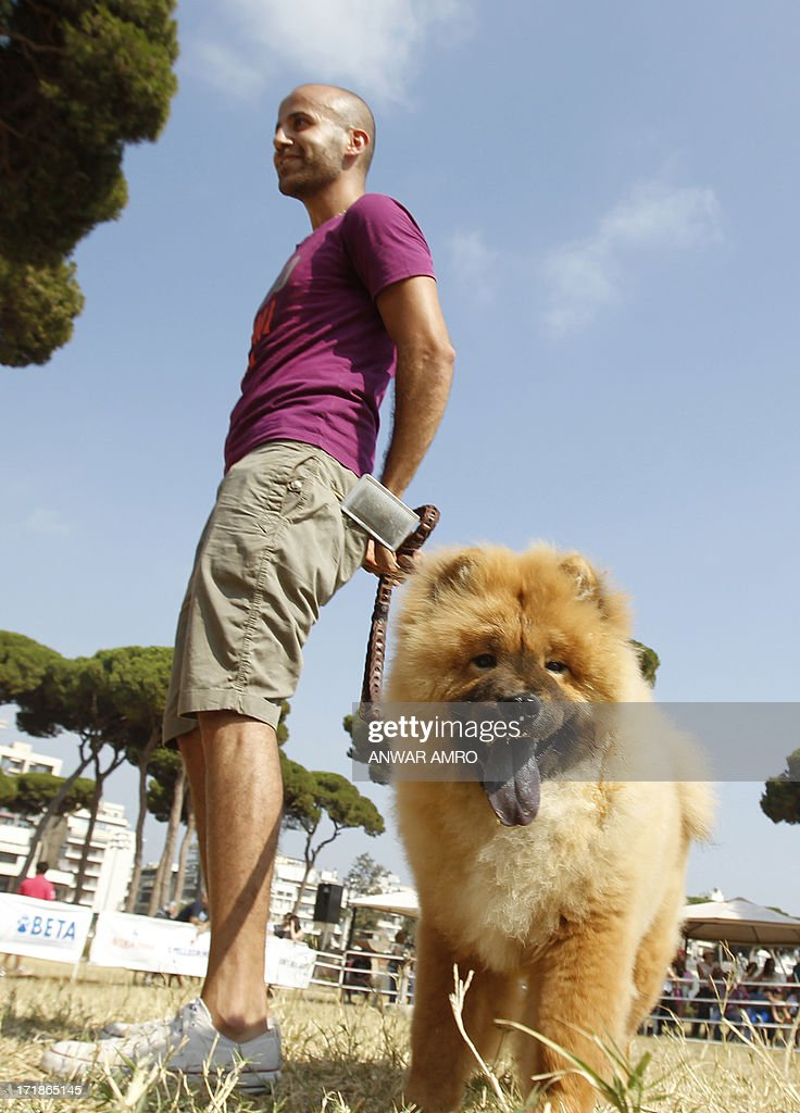 A Lebanese man stands with his dog in the arena during the Beirut for the Ethical Treatment of Animals (BETA) dog show in Beirut, which holds contests to name 'best dog', 'cutest puppy', and 'best dog costume' in addition to 12 other categories on June 29, 2013. The show is one of BETA's major fundraisers to try to improve the welfare of animals in the region and to stop the abuse against them.