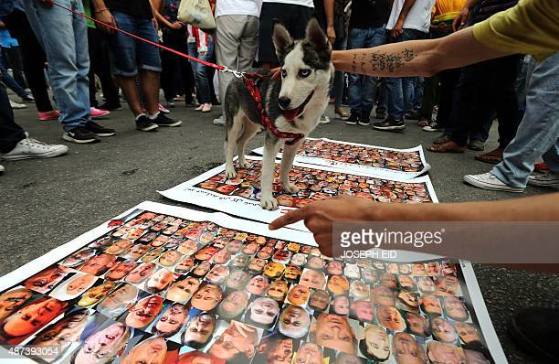 Lebanese protesters walk a dog over portraits of MPs during a protest denouncing Lebanon's stagnant political system that has become the target of...