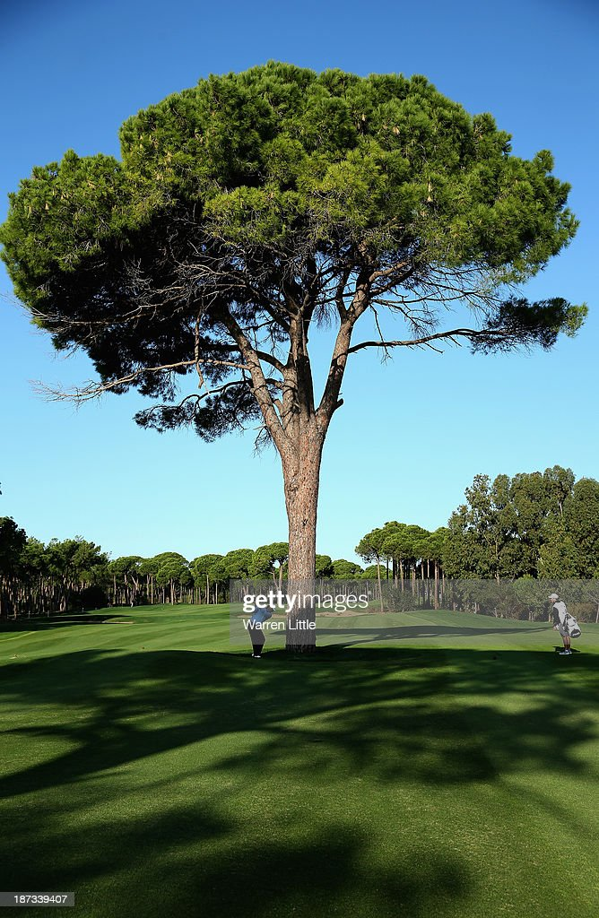 Lee Westwood of England lays his second shot on the 13th hole from behind a tree during the completion of the first round of the Turkish Airlines Open at The Montgomerie Maxx Royal Course on November 8, 2013 in Antalya, Turkey.