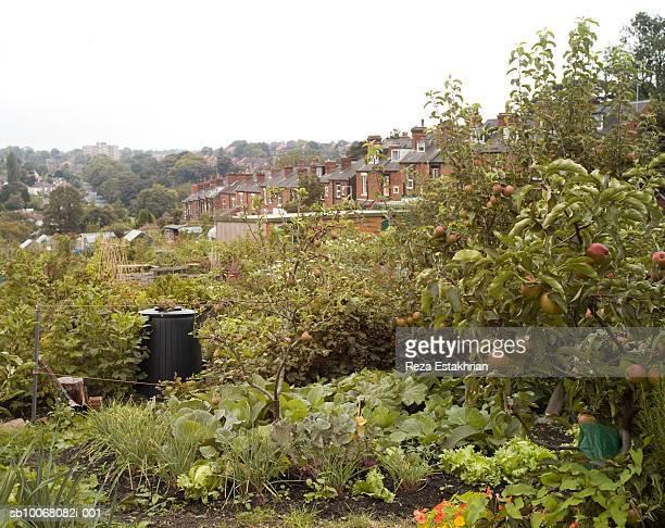 UK, Leeds, gardens