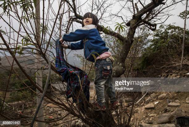'Left behind' child Luo Hongni hangs laundry in a tree after washing clothes whole doing chores on December 18 2016 in Anshun China Like millions of...