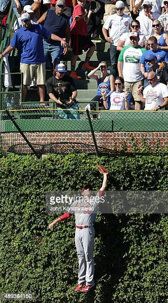Left fielder Stephen Piscotty of the St Louis Cardinals catches a ball against the ivy hit by Kyle Schwarber of the Chicago Cubs during the fifth...