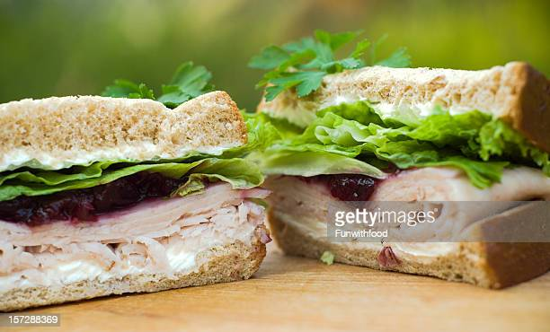Leftover Holiday Thanksgiving Roast Turkey Dinner & Cranberry Sauce Sandwich Lunch