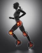 Leg most injured regoins in sport - ankle,hip,knee in 3D