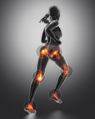 Leg most injured regoins in sport - ankle,hip,knee