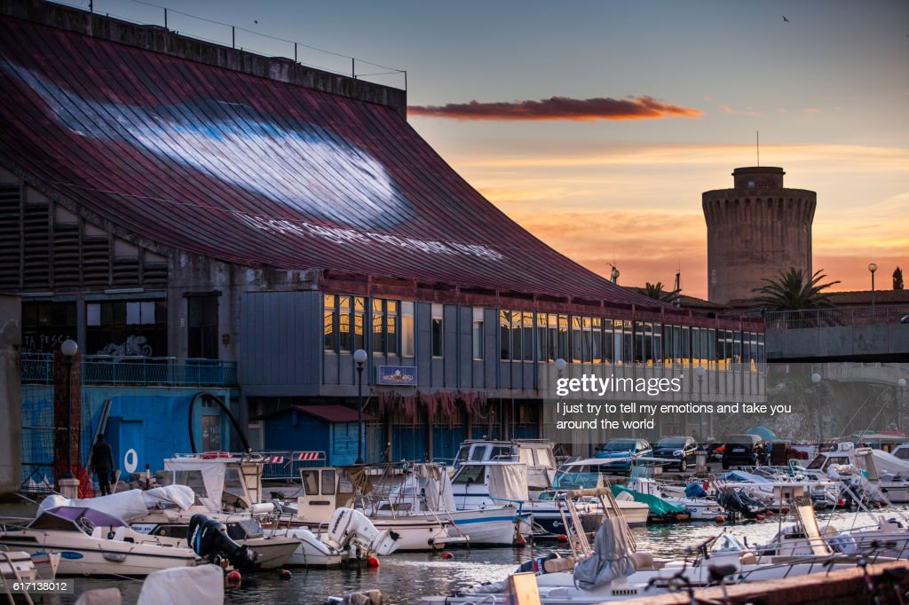 Leghorn, Disctrict of Venice, Tuscany - Harbour and general fish market : Stock Photo