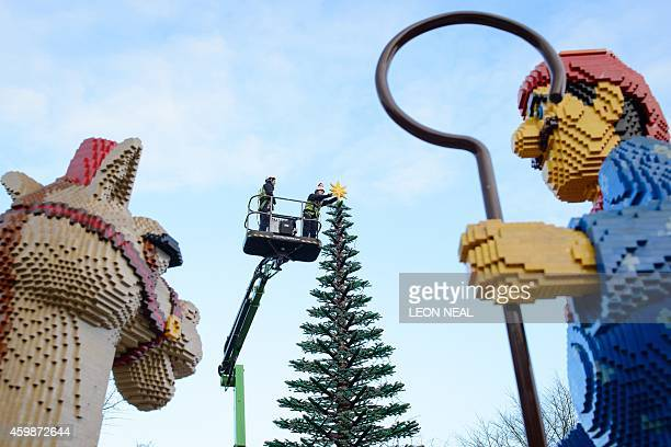 Legoland model maker Katrina James poses for pictures with a 3kg Lego star as she places it onto the top of a 8m tall Lego christmas tree during a...