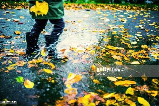 Legs of child in rubber boots running in puddles with colourful autumn leafs
