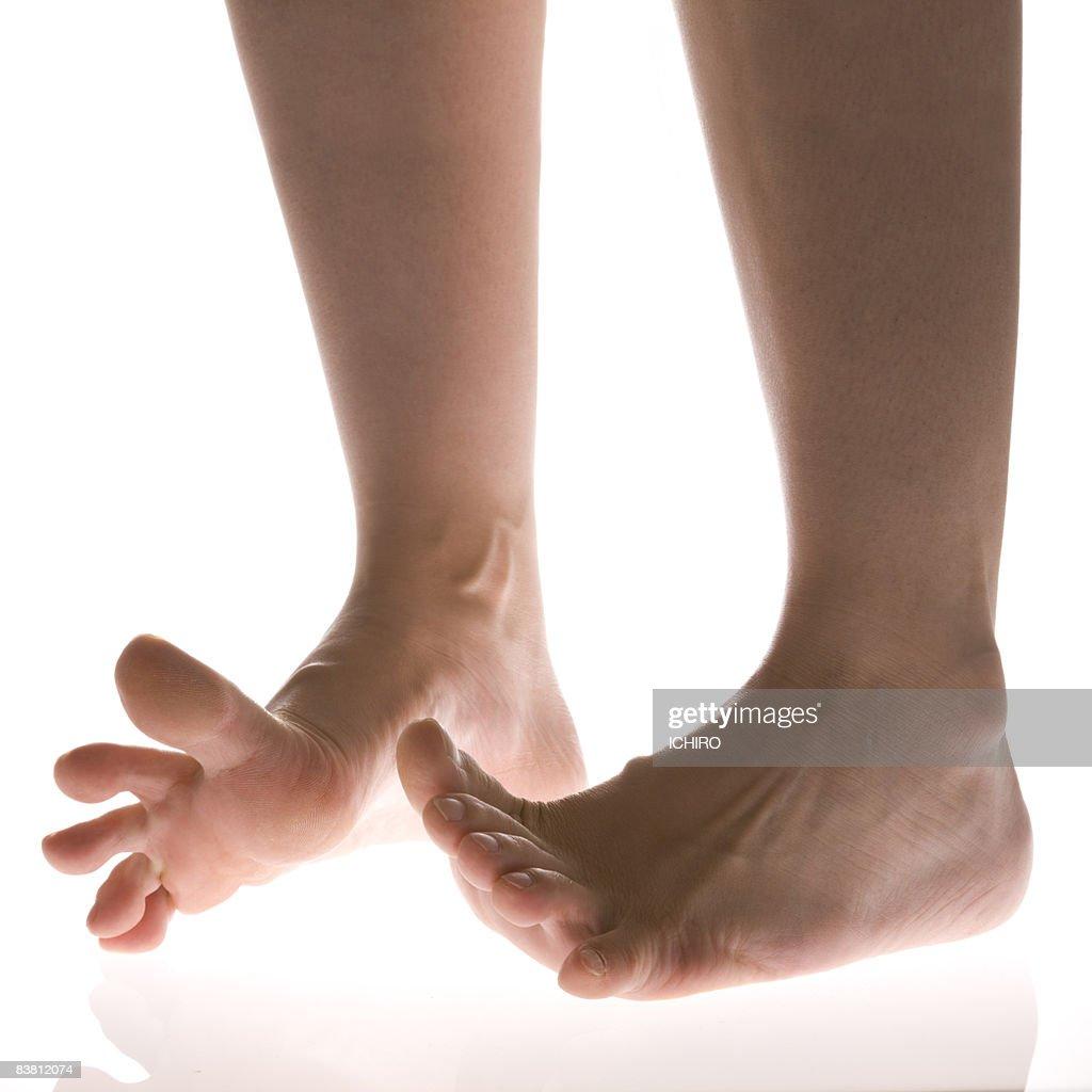 legs : Stock Photo