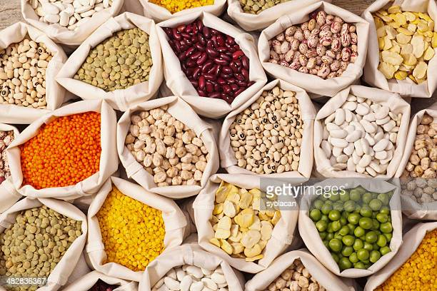 Leguminous graines Collection