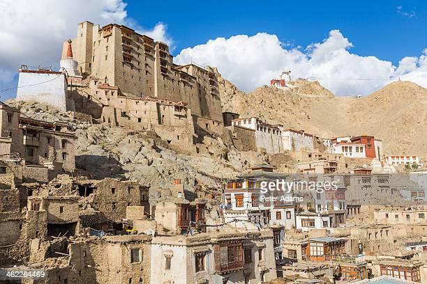 Leh Palace & Tsemo Gompa behind Leh, Ladakh, India