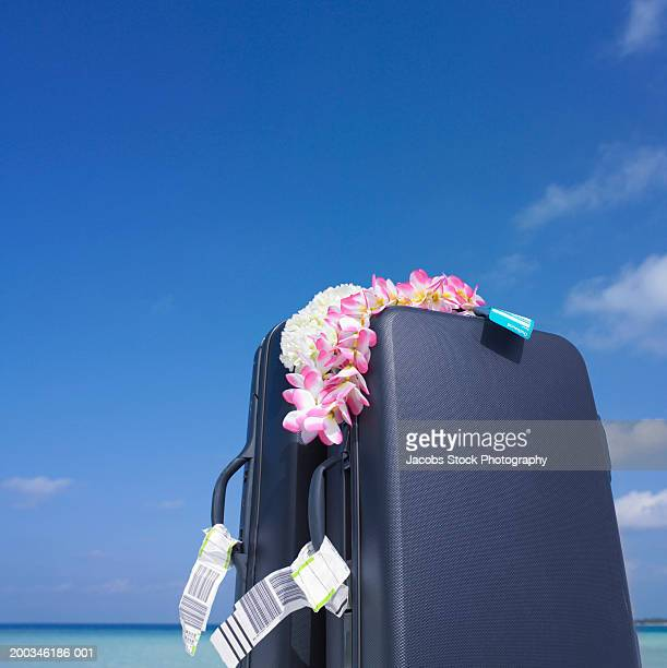 Lei draped on suitcases on beach, low angle view
