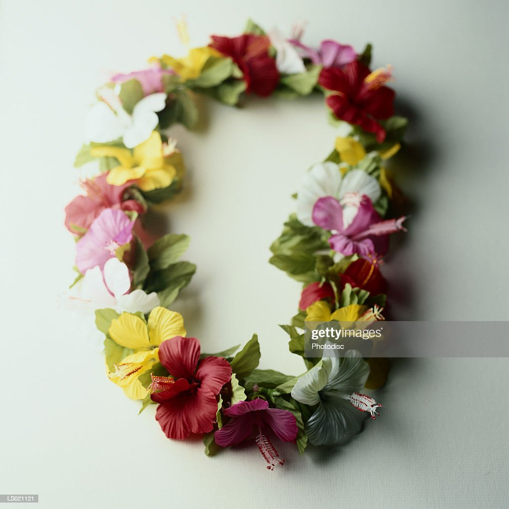 Lei of Hibiscus : Stock Photo