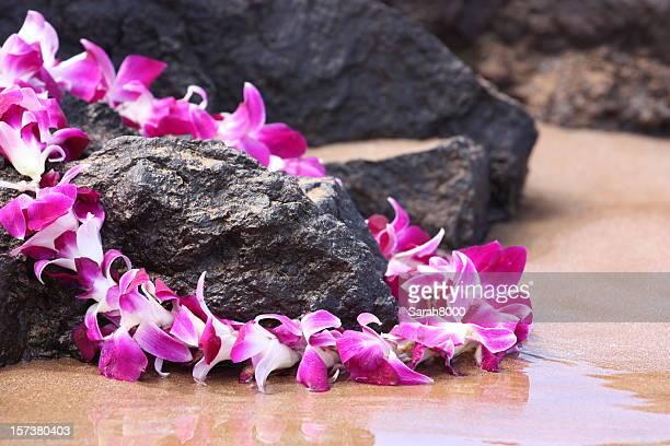 Lei sulle rocce