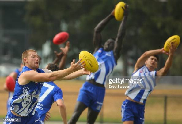 Leigh Adams Majak Daw and Robin Nahas catch the ball during a North Melbourne Kangaroos AFL training session at Aegis Park on February 12 2014 in...