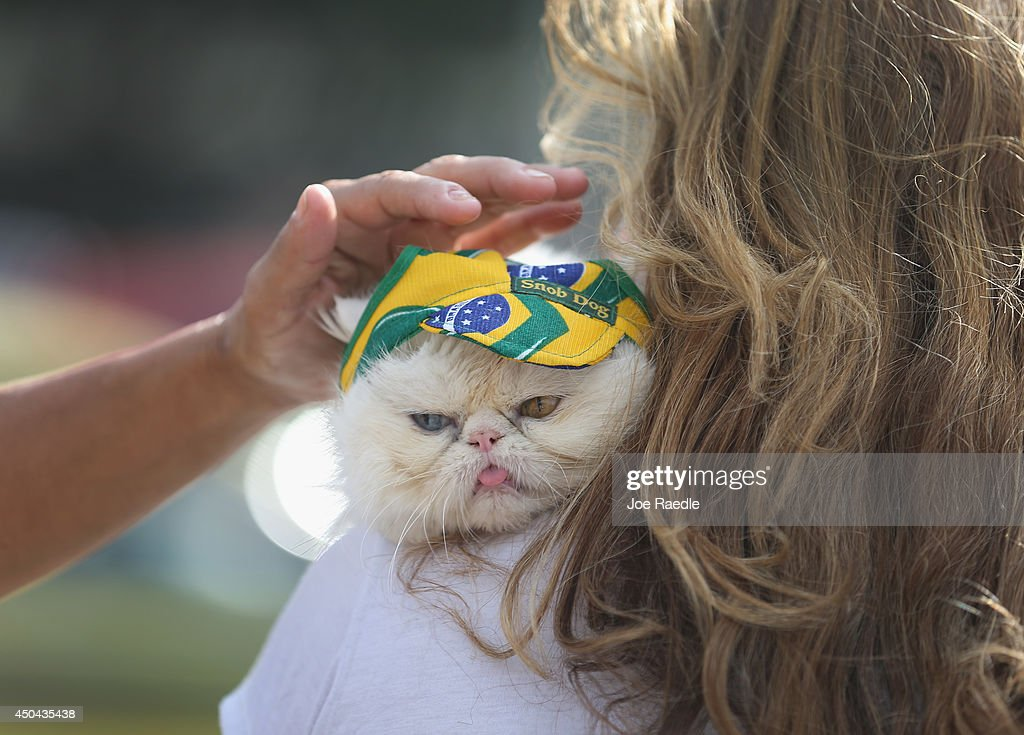 Leila de Matos holds her cat, Yandu, as it wears a Brazlian flag hat as they visit Copacabana beach while waiting for the start of the World Cup tournament on June 11, 2014 in Rio de Janeiro, Brazil. Brazil continues to prepare to host the World Cup which starts on June 12th and runs through July 13th.