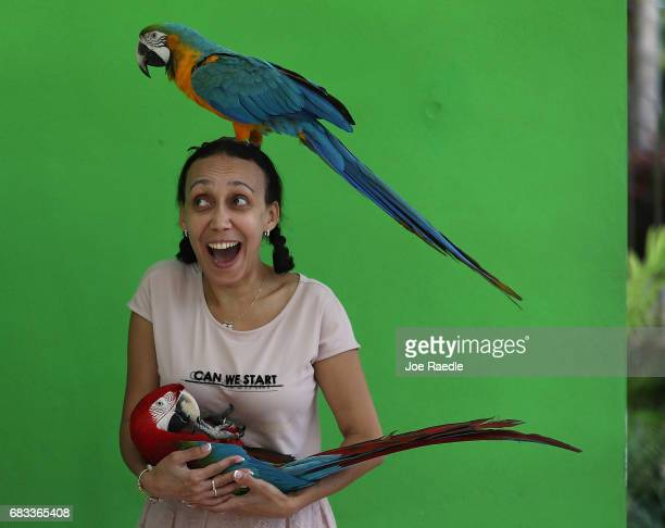 Leila Khauliani on vacation from Russia interacts with parrots at Jungle Island as Florida Governor Rick Scott announces that the number of tourists...